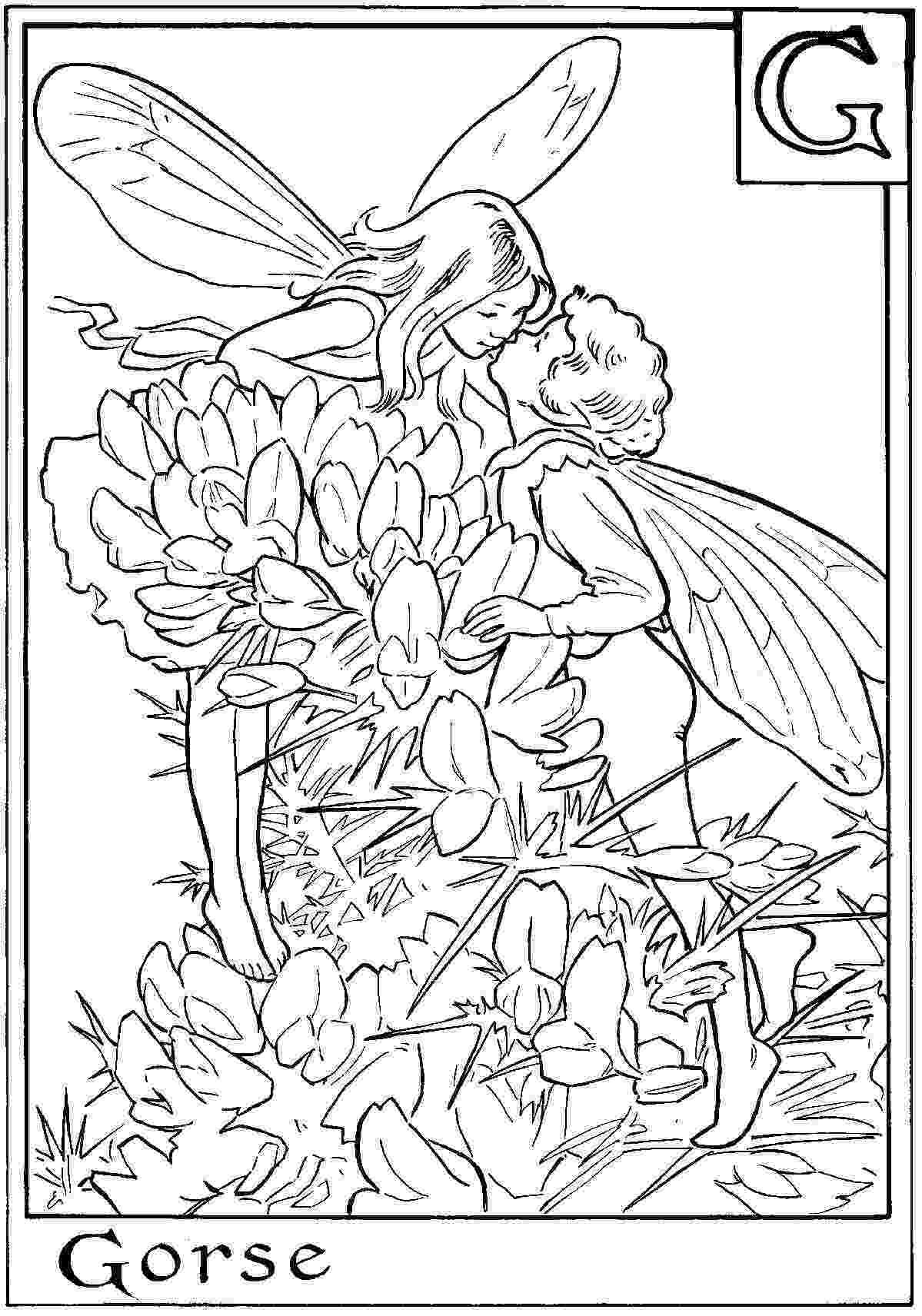 fairy color pages coloring pages fairies free printable coloring pages free color pages fairy