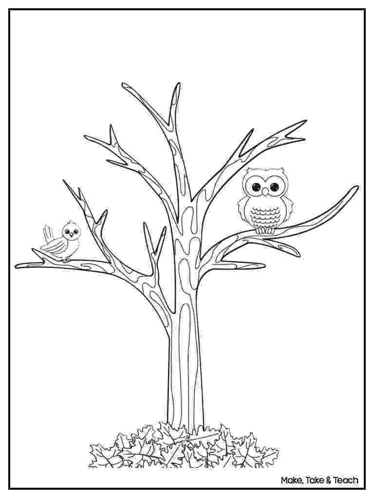 fall tree coloring sheet bare tree coloring page tree coloring page tree stencil fall coloring tree sheet