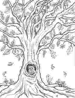 fall tree coloring sheet make it easy crafts free printable autumn owl tree coloring fall sheet tree