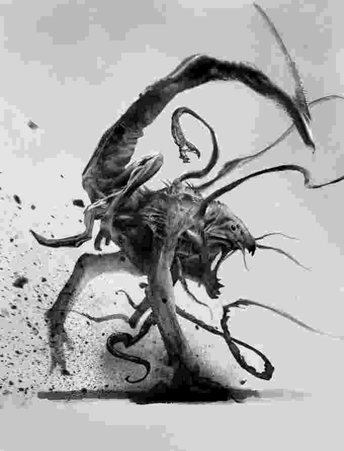 fantasy creatures 17 best images about 40k xviii legion salamanders on creatures fantasy