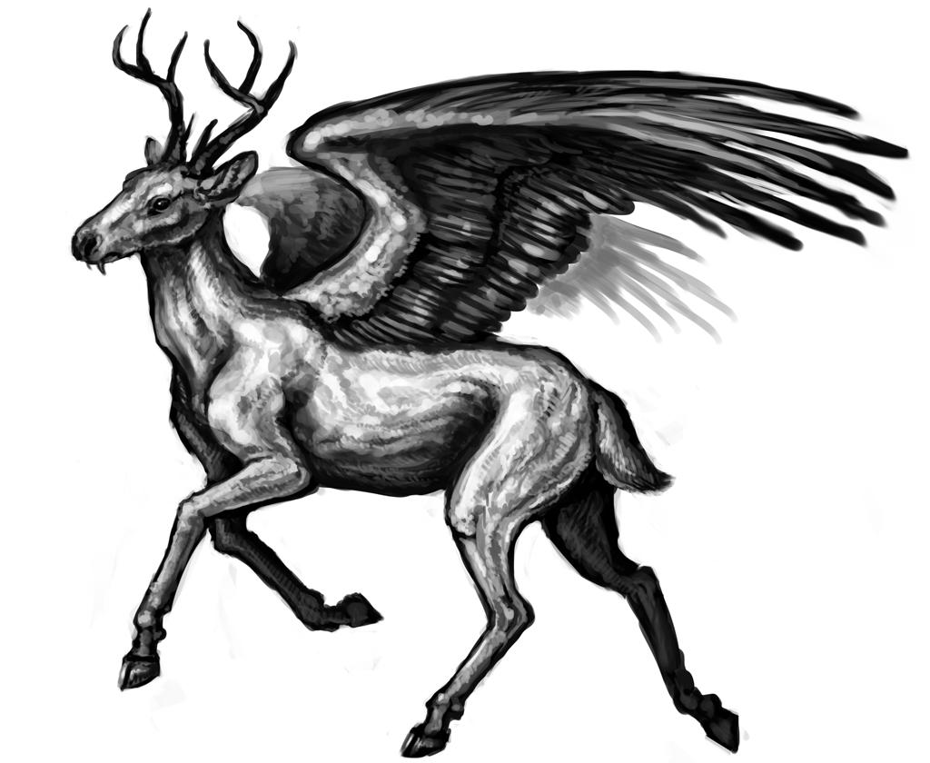 fantasy creatures fantasy creatures on tumblr fantasy creatures