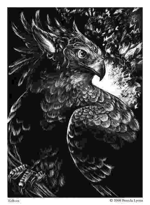fantasy creatures tumblr realistic dragon fantasy dragon dragon design fantasy creatures