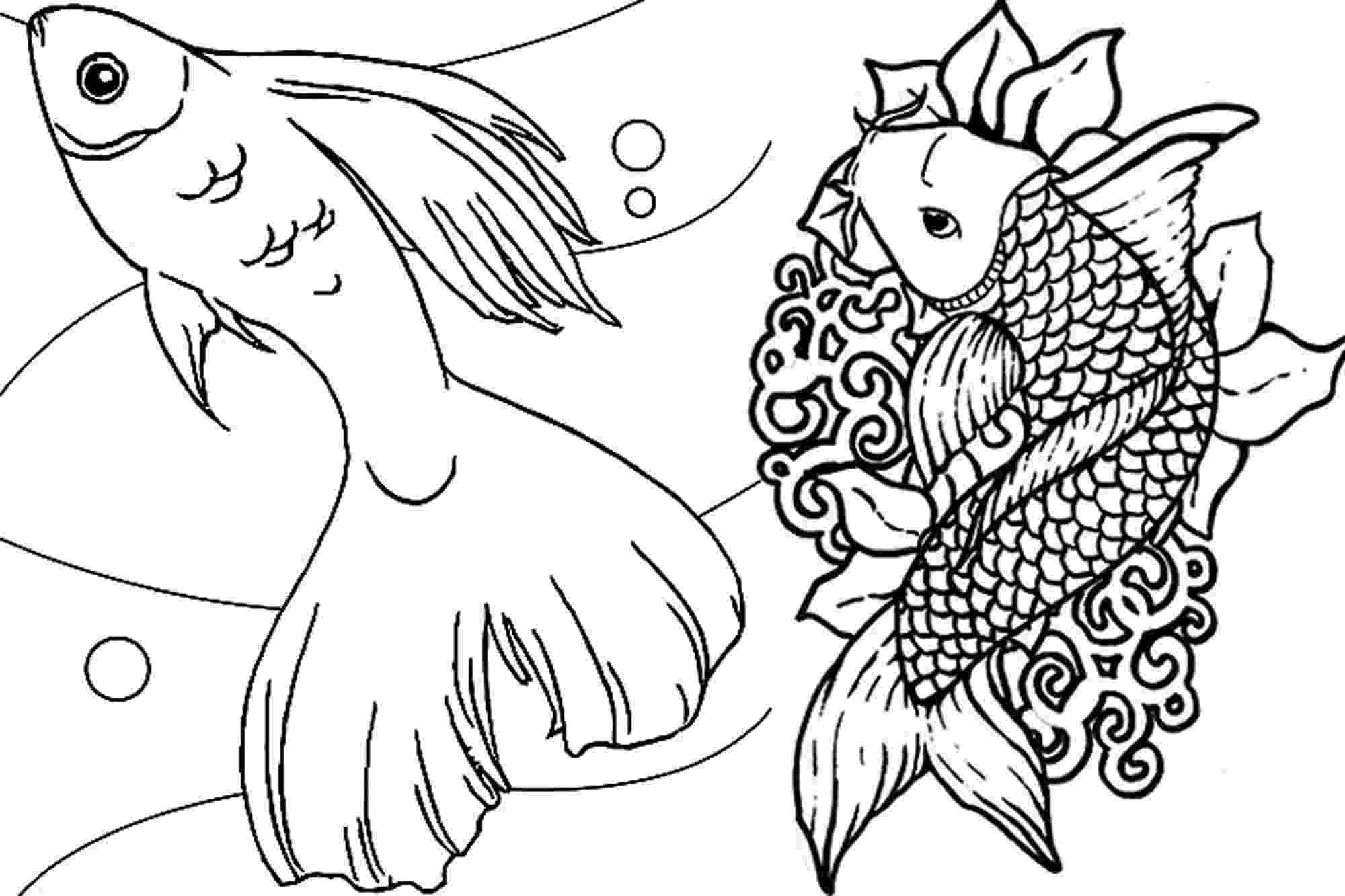 fish coloring pages for adults fish coloring pages for adults timeless miraclecom fish coloring pages for adults