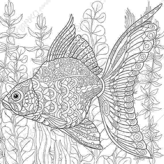 fish coloring pages for adults free printable adult coloring page tropical fish the adults fish for pages coloring