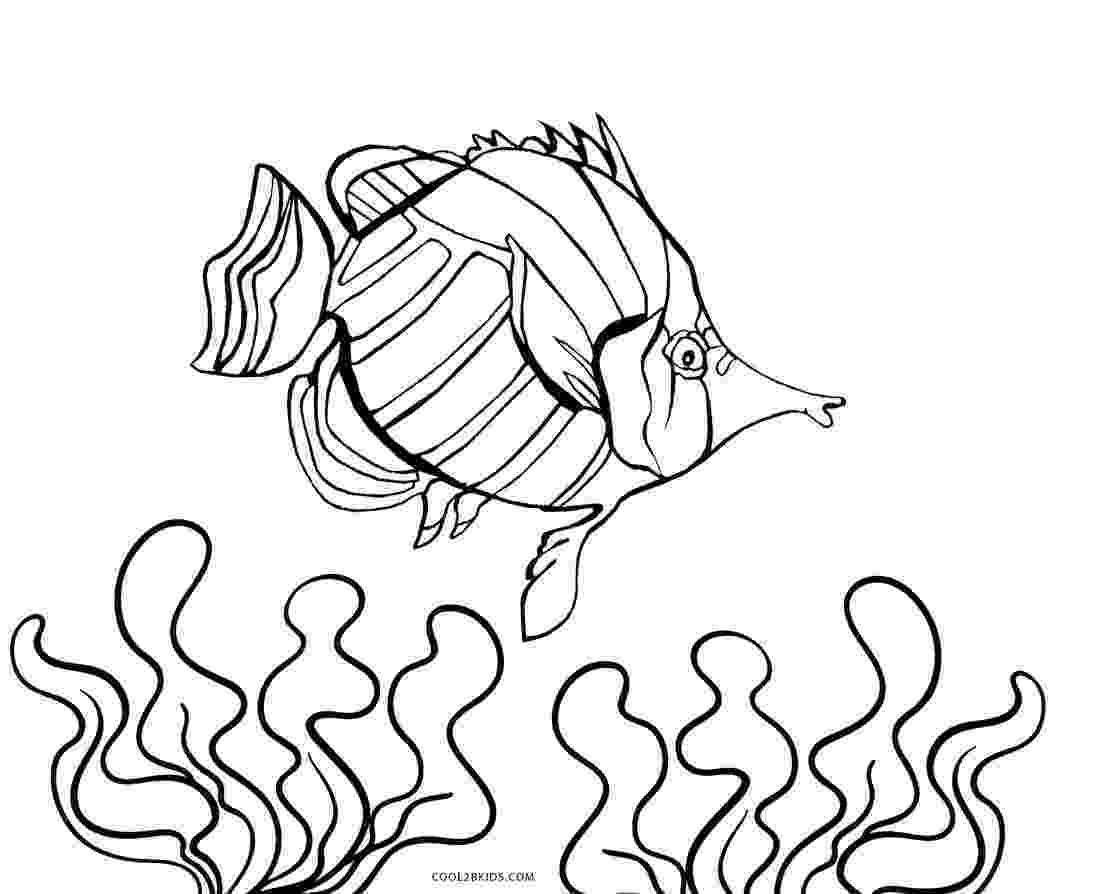fish picture to color free printable fish coloring pages for kids cool2bkids color to fish picture