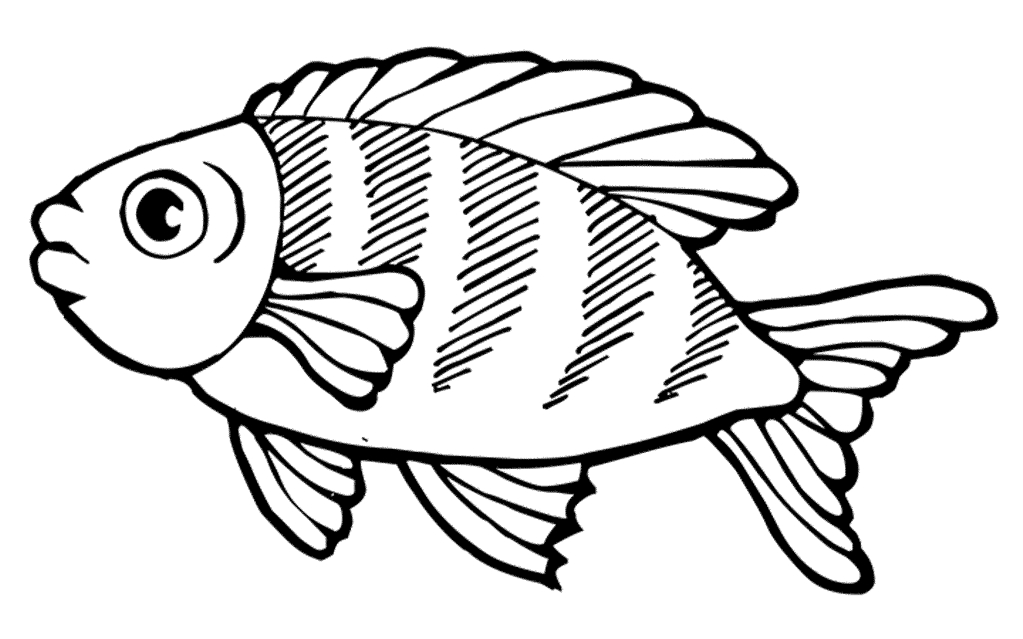fish picture to color free printable goldfish coloring pages for kids picture fish color to