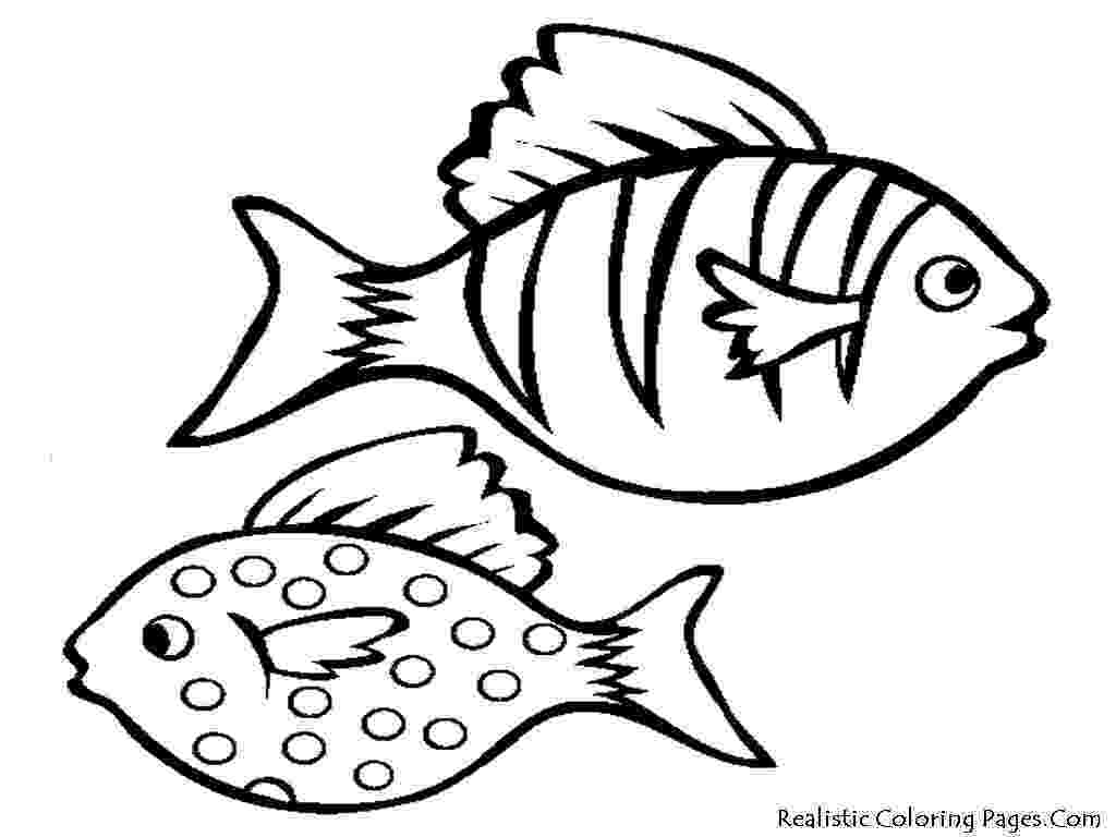 fish picture to color free simple fish drawing for kids download free clip art to color picture fish