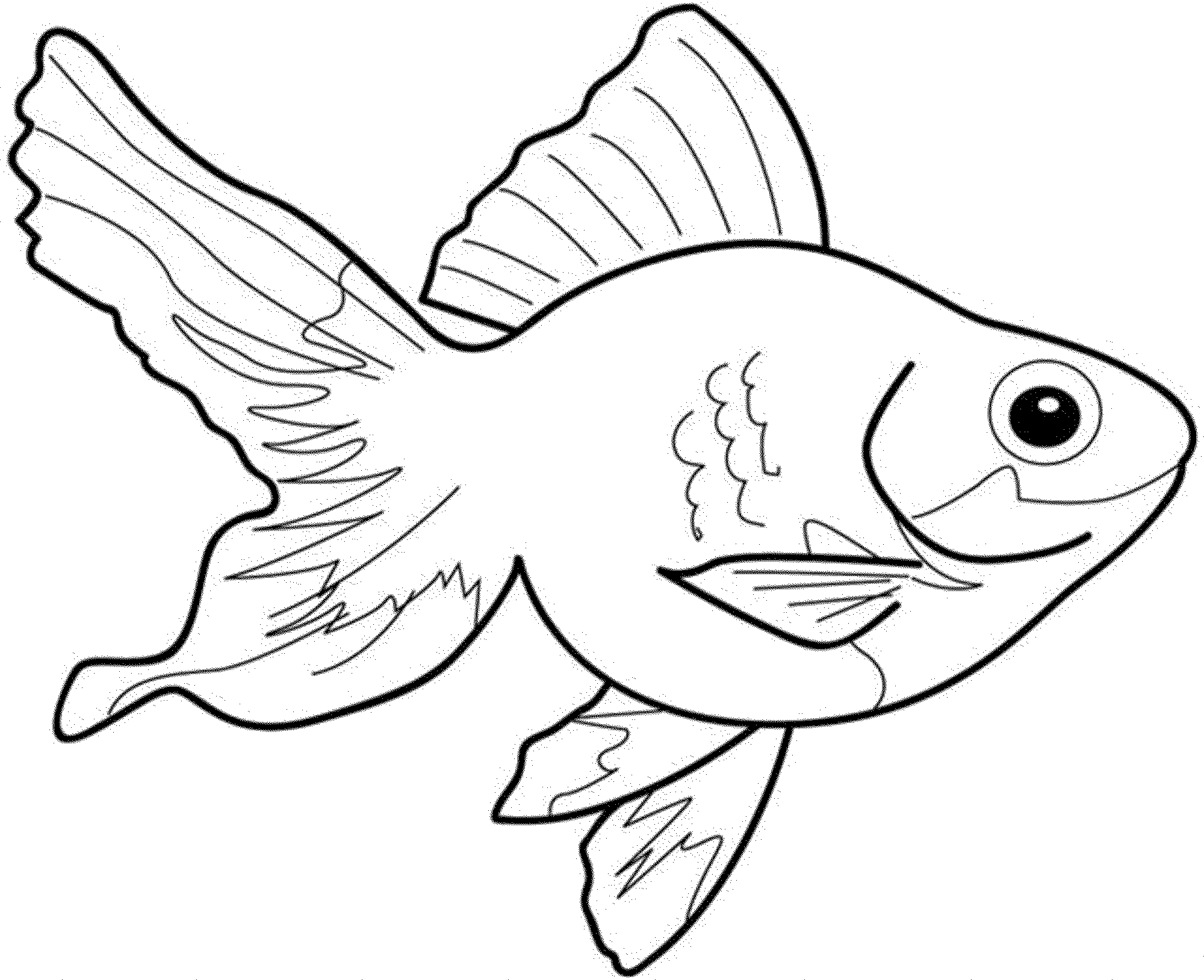 fish picture to color print download cute and educative fish coloring pages fish to picture color