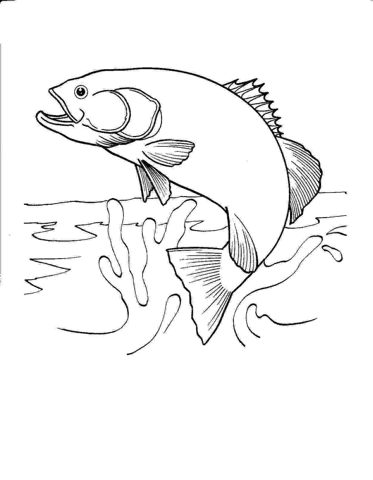 fish picture to color printable fish coloring pages free printable fish fish picture color to