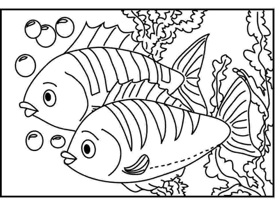 fishes coloring pages 20 free printable fish coloring pages everfreecoloringcom fishes pages coloring