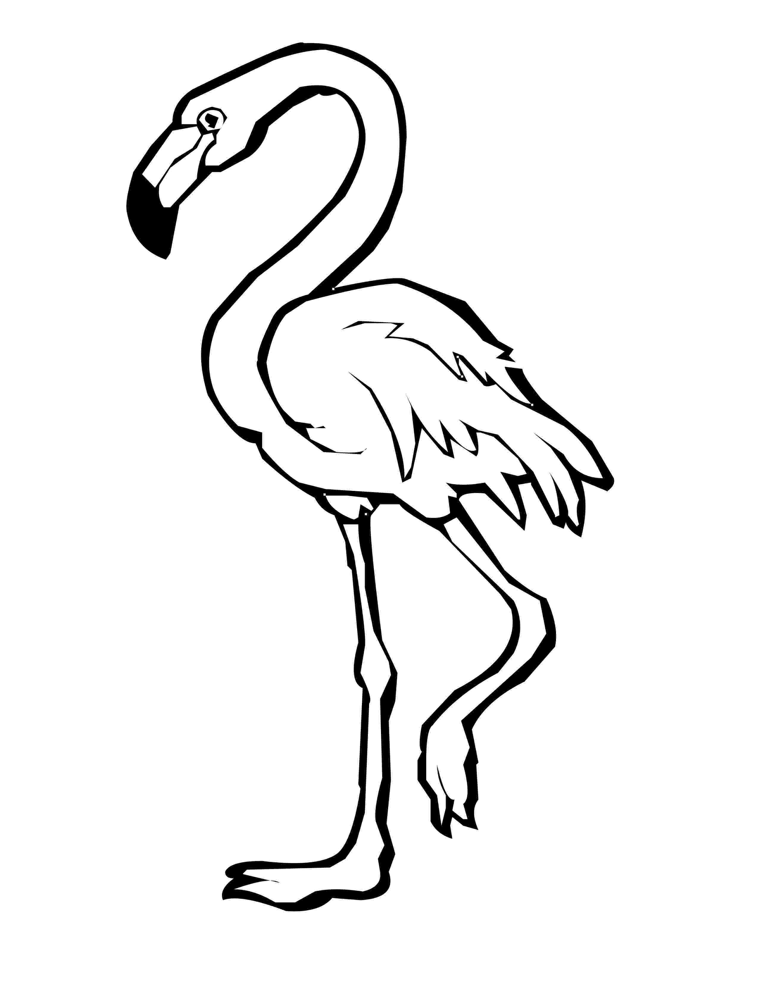 flamingo coloring sheet flamingos coloring pages to kids sheet flamingo coloring