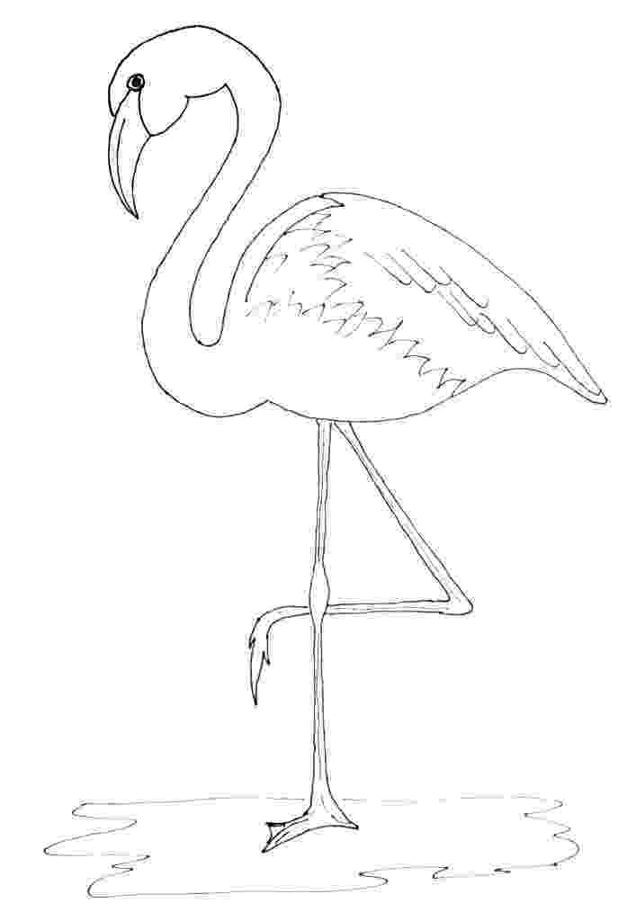 flamingo template pin by muse printables on printable patterns at flamingo template