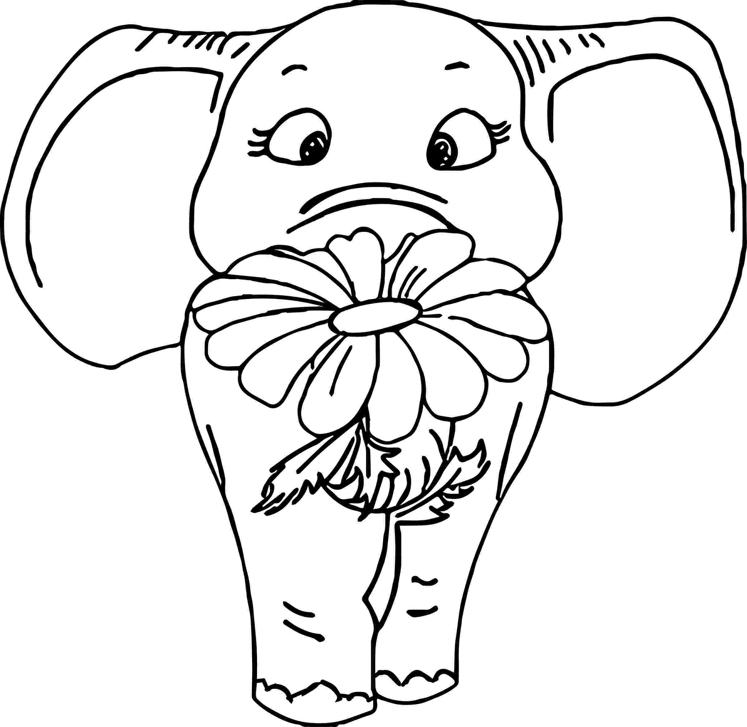 floral elephant coloring page cute baby elephant with flower coloring page free coloring floral elephant page