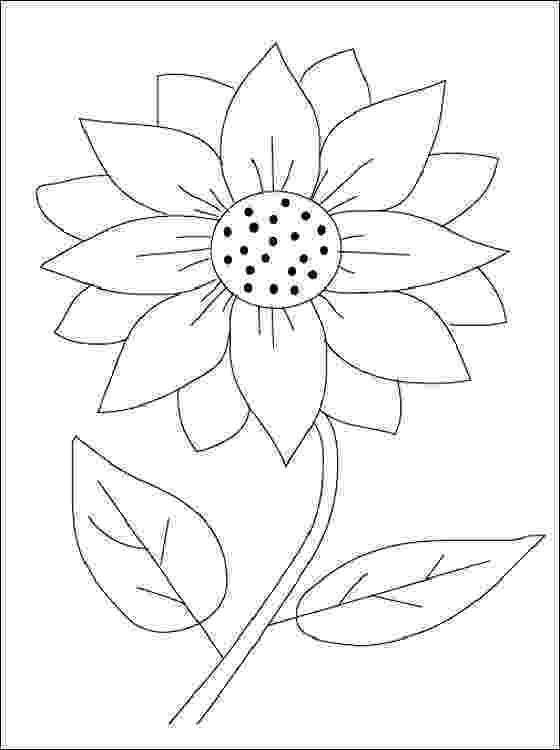 flower patterns coloring book alisaburke free spring coloring page download spring book coloring patterns flower