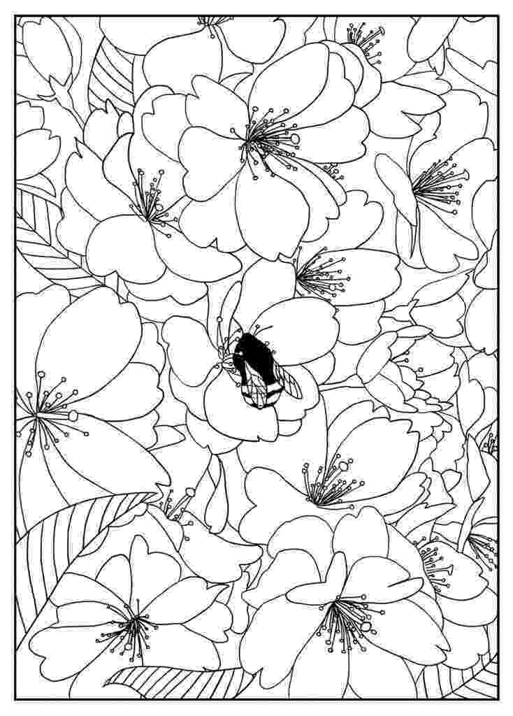 flower patterns coloring book printable adult colouring page digital download print flower book coloring patterns flower
