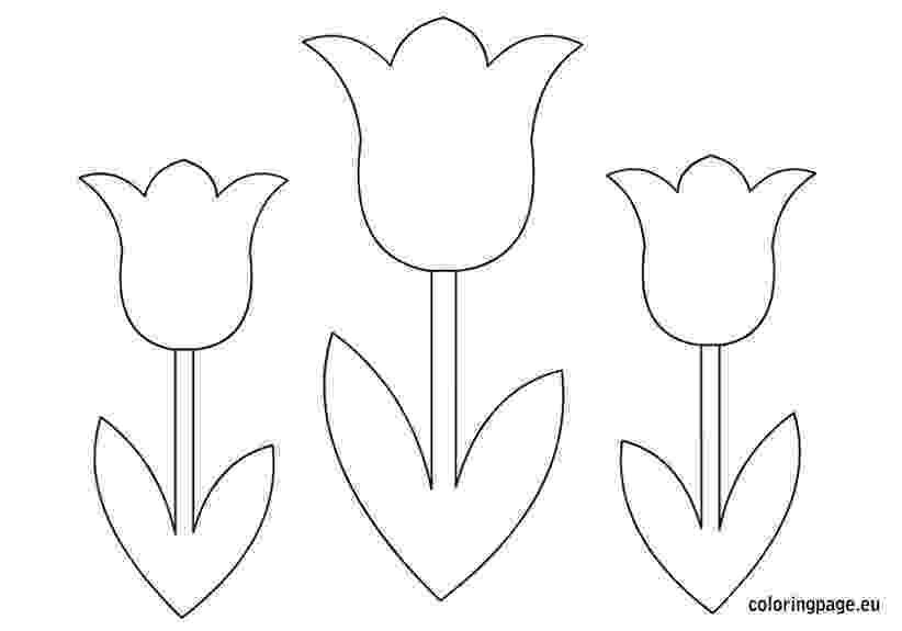 flower templates for coloring 17 best images about daisy scouts on pinterest daisy for coloring templates flower
