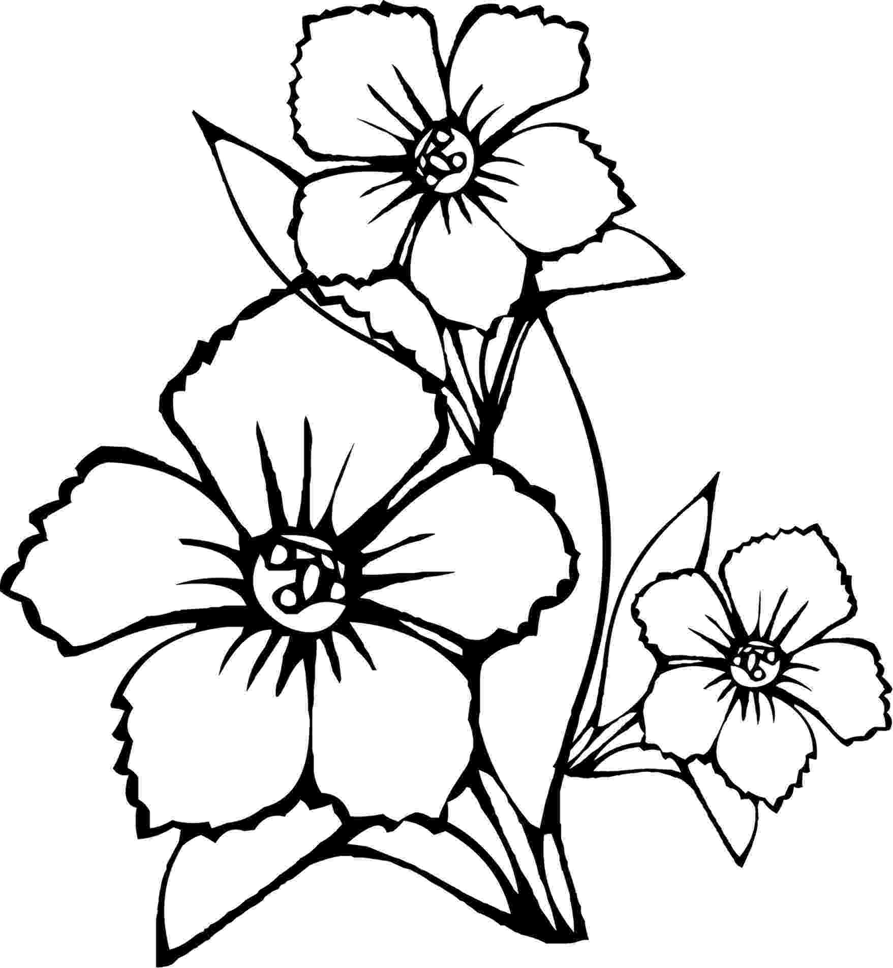 flowers to color print free printable flower coloring pages for kids best flowers color print to