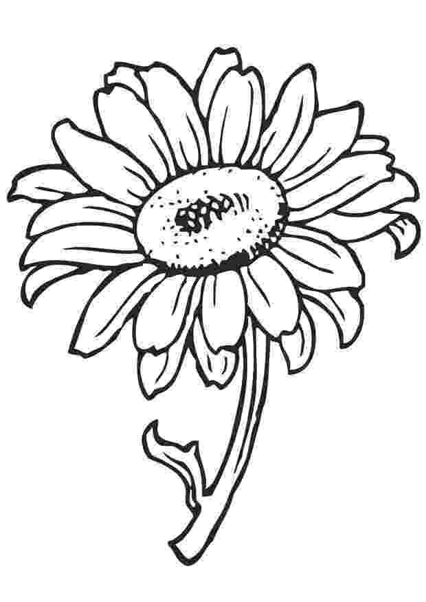 flowers to color print simple flower coloring pages getcoloringpagescom print color flowers to