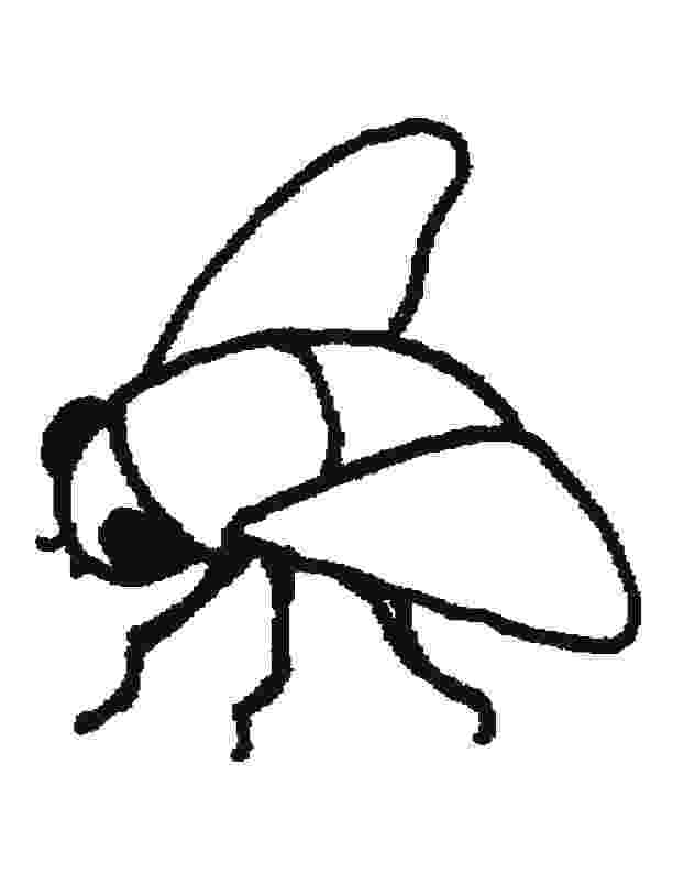 fly printable fly coloring pages getcoloringpagescom printable fly