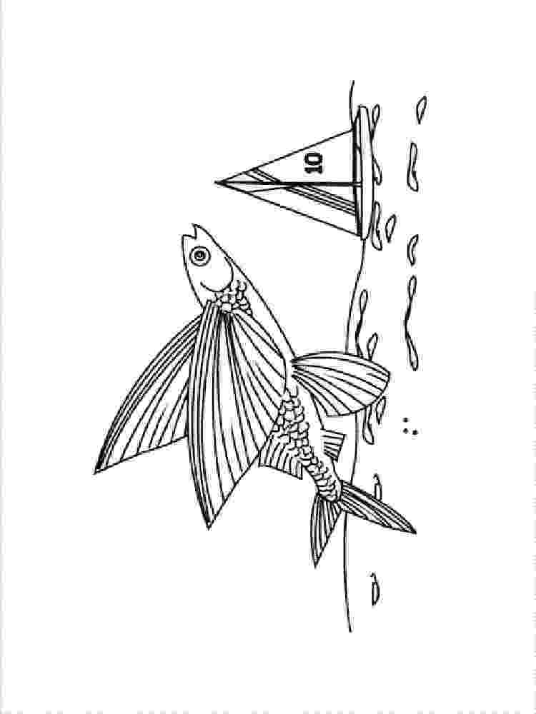 flying fish coloring page flying fish coloring page animals town animals color coloring fish flying page
