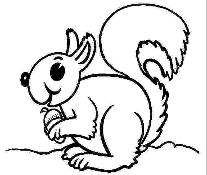 flying squirrel coloring page free flying squirrel coloring page download free clip art squirrel page flying coloring
