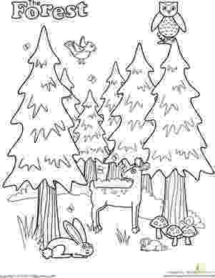 forest animal coloring pages forest coloring page all printables from a z preschool coloring pages forest animal