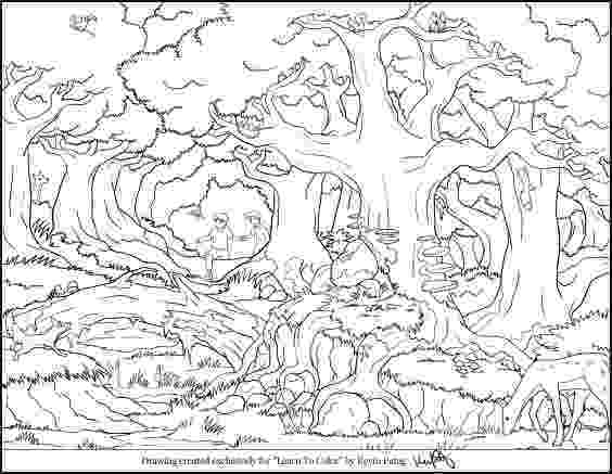 forest animals coloring pages 111 best jungle safari vbs images on pinterest animales animals pages coloring forest