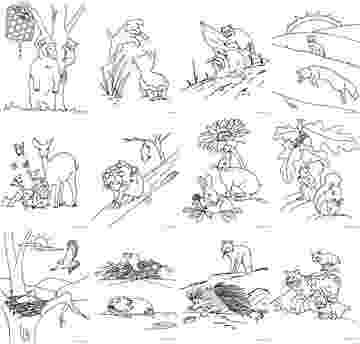 forest animals coloring pages coloring by me coloring books animals coloring forest pages