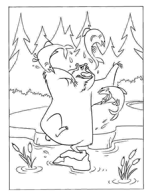 forest animals coloring pages forest habitat drawing at getdrawings free download animals pages forest coloring