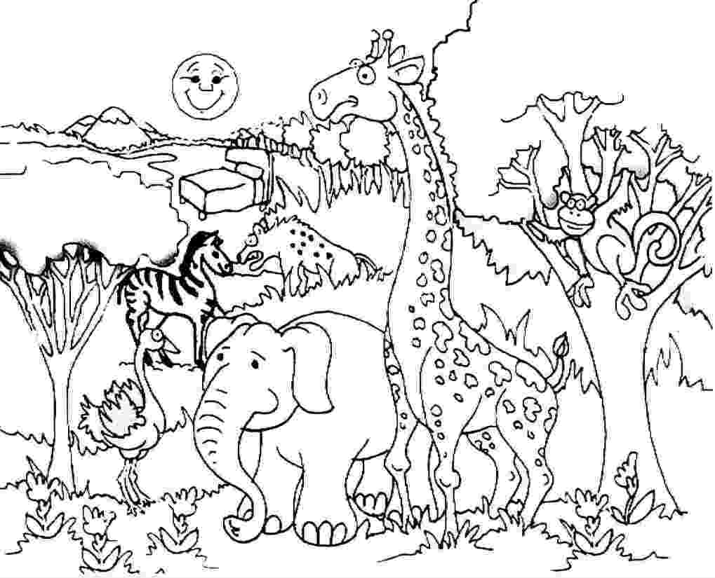 forest animals coloring pages giraffe and forest animals coloring preschool and homeschool pages forest coloring animals