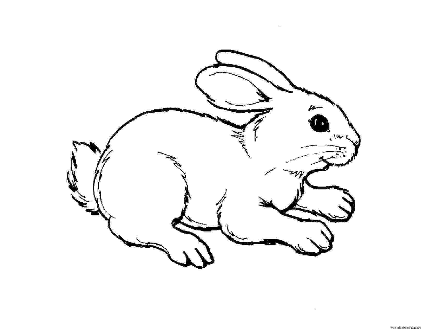 free baby animal coloring pages to print animals coloring pages getcoloringpagescom animal baby print pages coloring free to