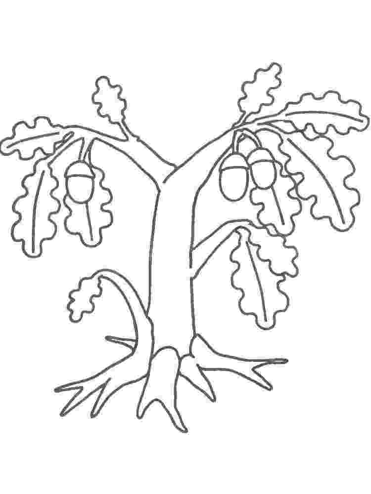 free coloring pages le tree free printable tree coloring pages for kids cool2bkids free coloring pages le tree