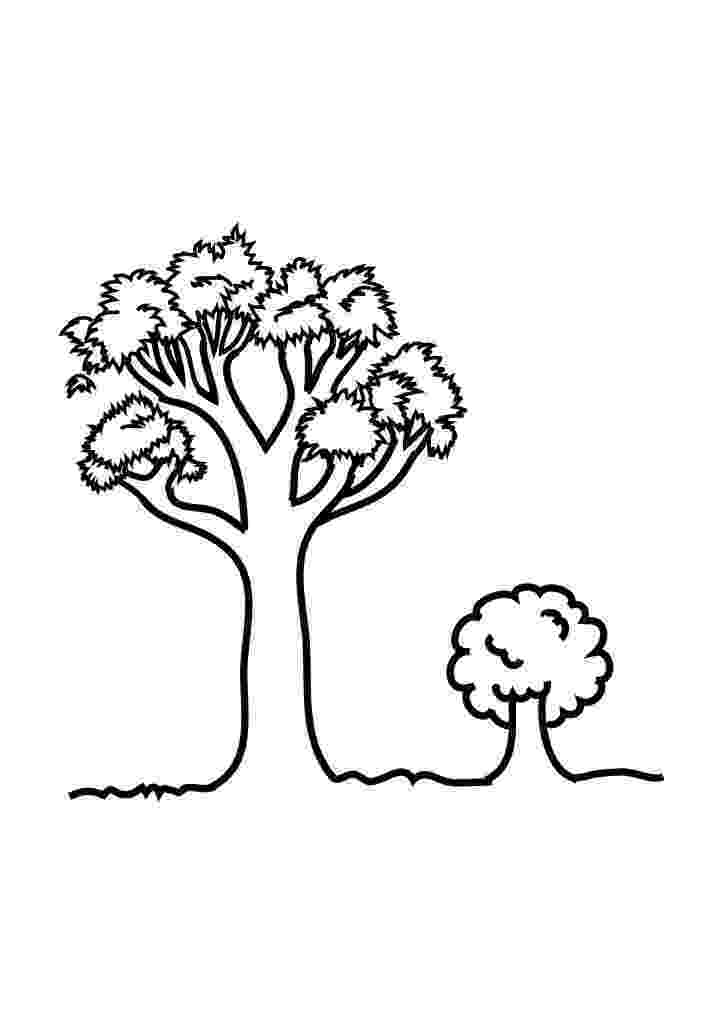 free coloring pages le tree free printable tree coloring pages for kids free pages le coloring tree