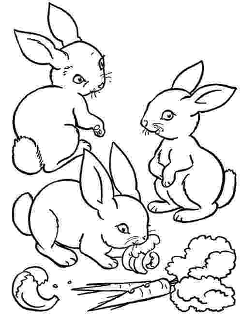free coloring pages of baby farm animals baby farm animals coloring pages for kids gtgt disney animals pages baby of farm coloring free