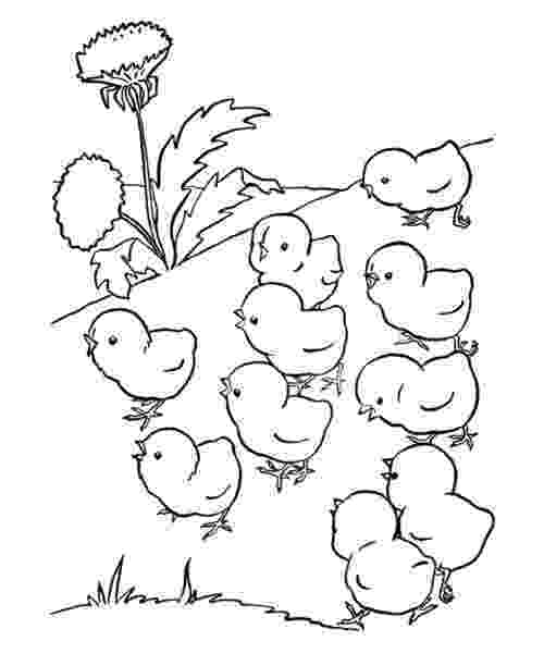 free coloring pages of baby farm animals farm animals coloring pages getcoloringpagescom animals coloring of free baby pages farm