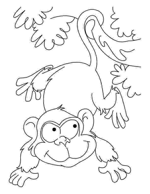 free colouring pages wild animals top 25 free printable wild animals coloring pages online pages colouring animals free wild