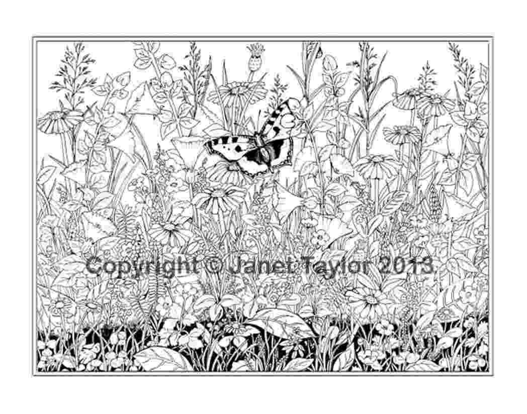 free detailed coloring pages very detailed colouring pages 603678 coloring pages for pages coloring free detailed