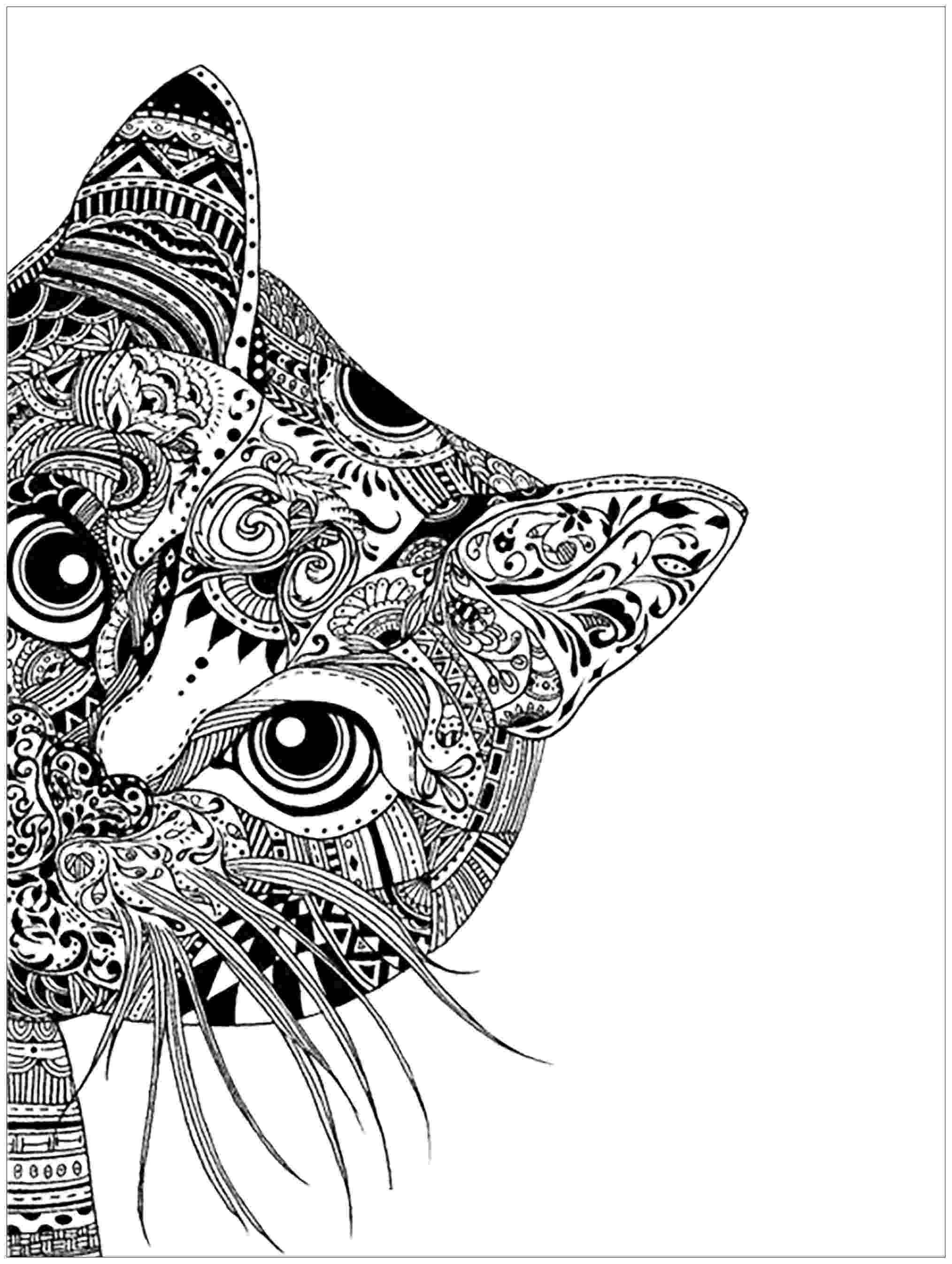 free online coloring pages for adults cats cat coloring pages for adults free pages online adults cats for coloring