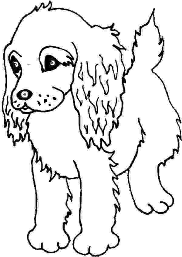 free online dog coloring pages boykin spaniel puppy coloring page freepuppies coloring pages coloring online free dog