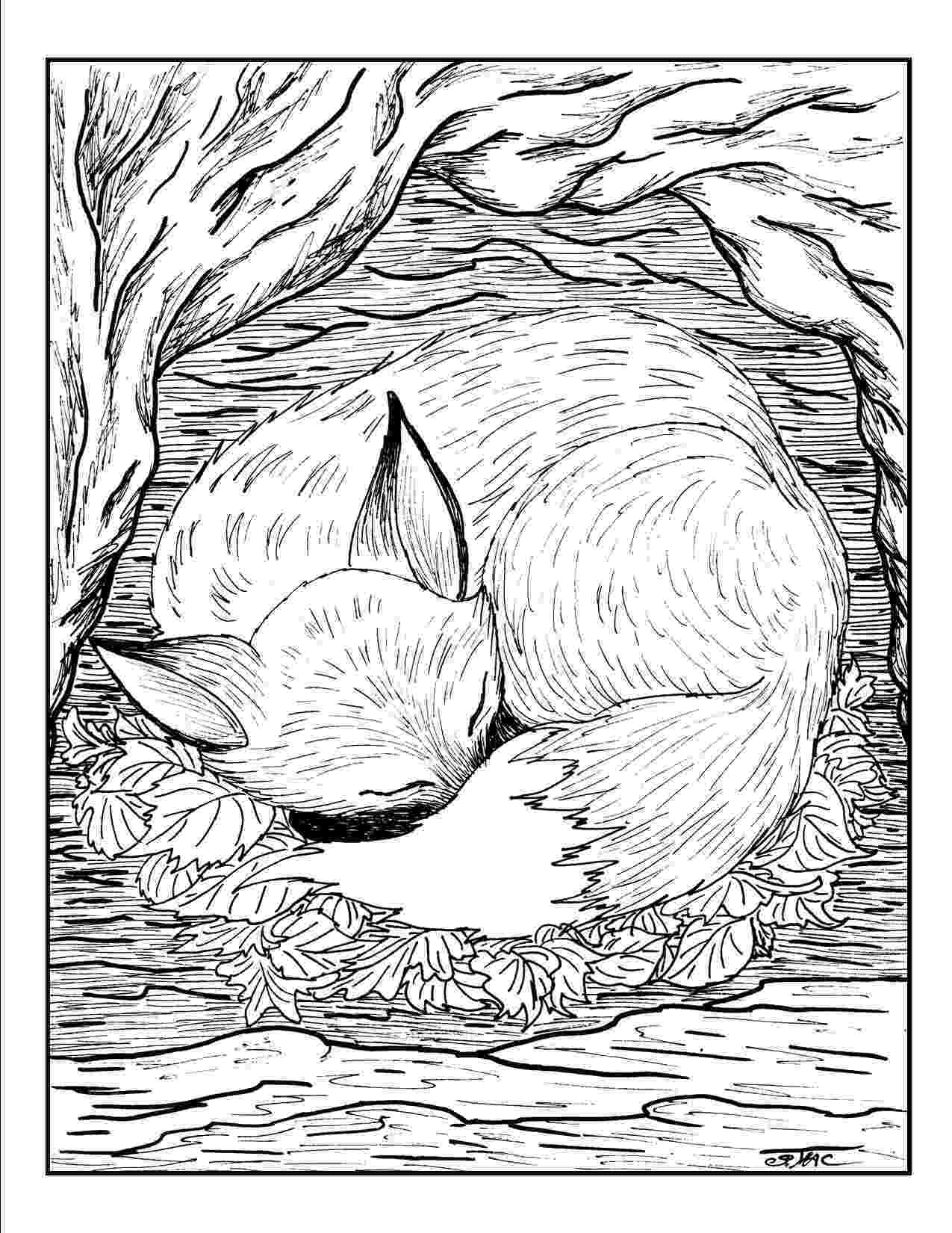 free printable coloring pages for adults nature nature coloring page getcoloringpagescom for nature free adults printable coloring pages