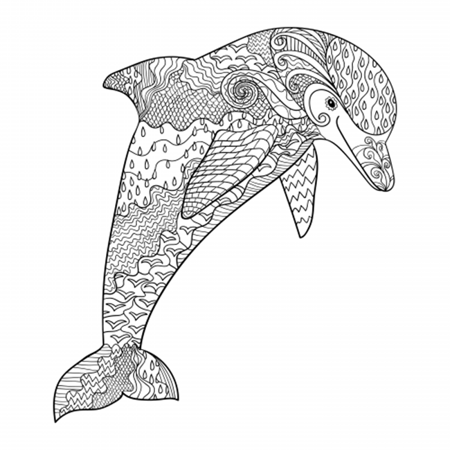 free printable dolphin coloring pages four dolphins coloring page free printable coloring pages dolphin free pages printable coloring