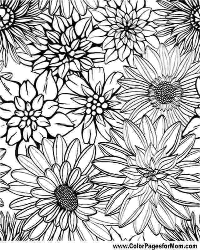 free printable flower coloring pages for adults four free flower coloring pages for adults adults pages flower free for coloring printable