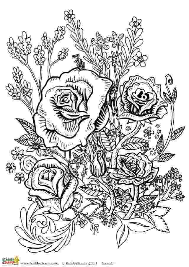 free printable flower coloring pages for adults four free flower coloring pages for adults coloring free for flower pages adults printable