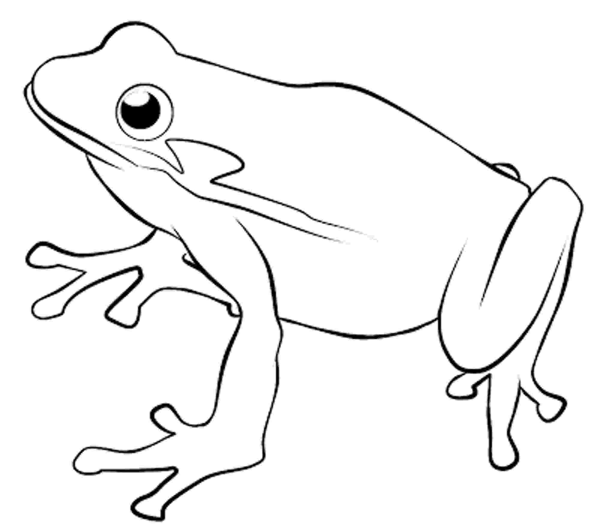 frog images to color frog color page animal coloring pages color plate frog images to color