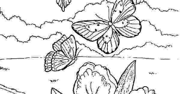 georgia o keeffe coloring pages georgia o keeffe coloring pages download free coloring o keeffe pages coloring georgia