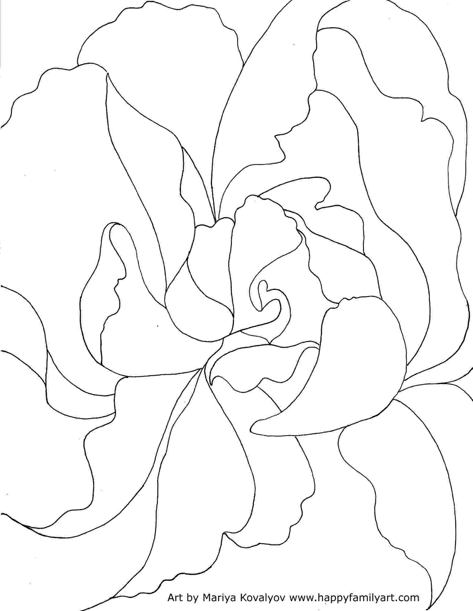 georgia o keeffe coloring pages georgia o39keeffe ram39s head and white hollyhock coloring coloring keeffe georgia o pages