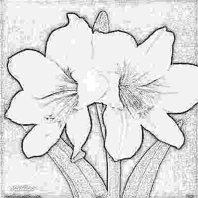 georgia o keeffe coloring pages georgia okeeffe mural art projects for kids o pages coloring georgia keeffe