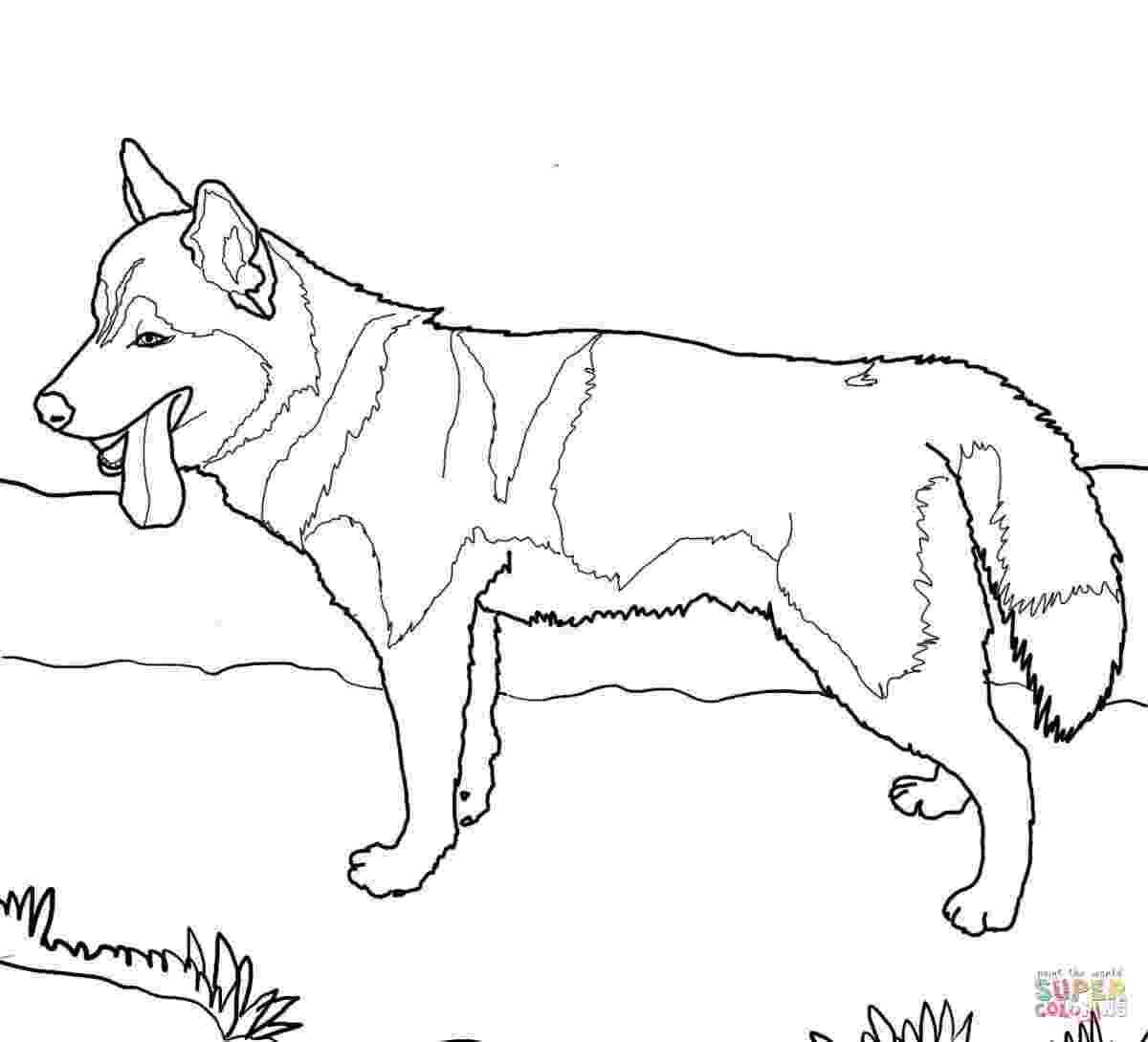 german shepherd coloring pages printable german shepherd coloring pages to download and print for free german pages printable shepherd coloring