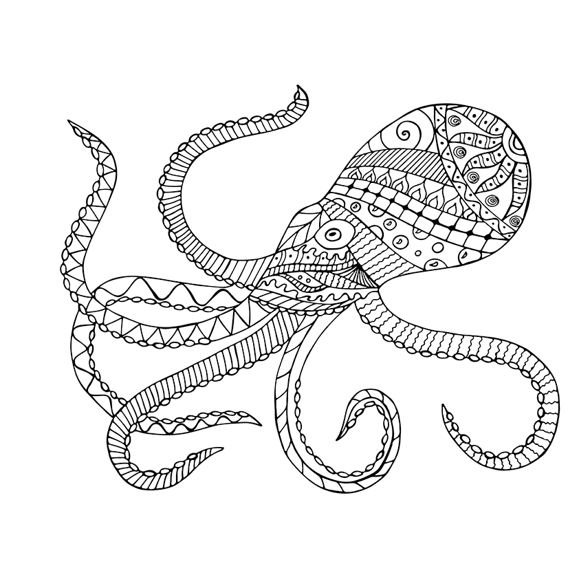 giant squid coloring page squid coloring pages getcoloringpagescom coloring giant page squid