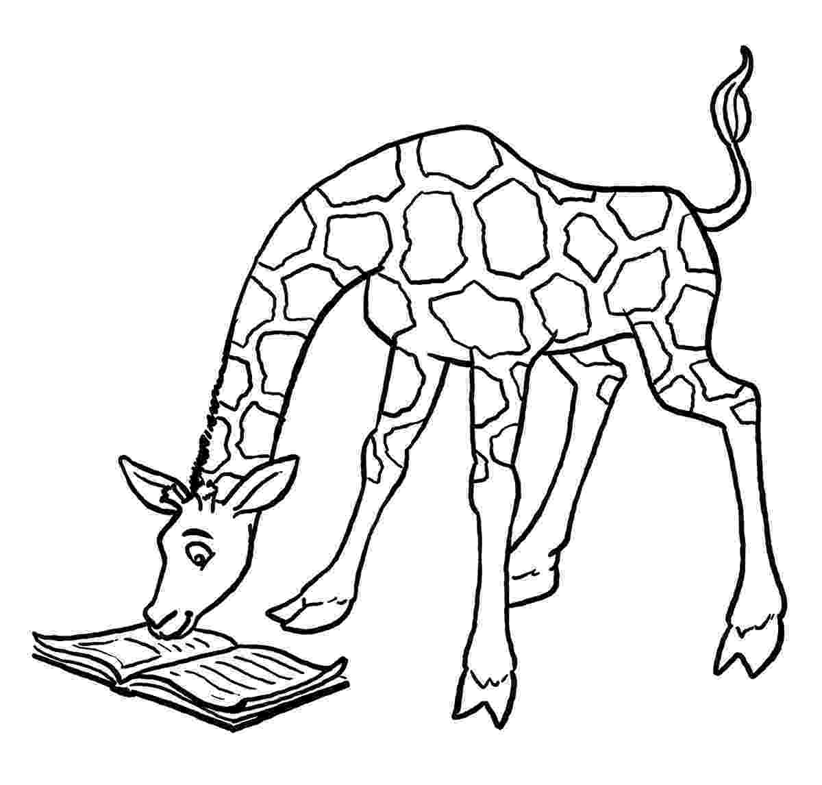 giraffe coloring pages baby giraffe drawing clipart best pages giraffe coloring